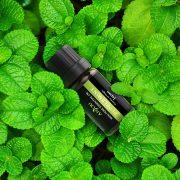 Anjou AJ-ES001 6-féle illat, illóolaj csomag (10-20001-191)